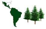 Latin America Pine Working Group
