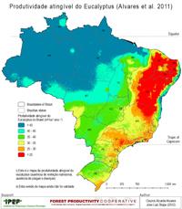 Brazil Potential Productivity Eucalyptus
